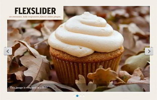 Flexslider-imagesliderplugin