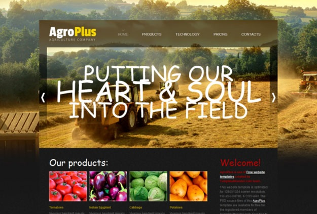argoplus theme [Free Html5 and Css3 Templates]