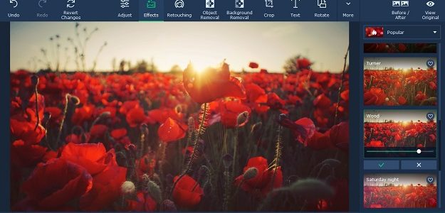 Movavi Photo Editor Review – Windows Photo Editing Software for Beginners