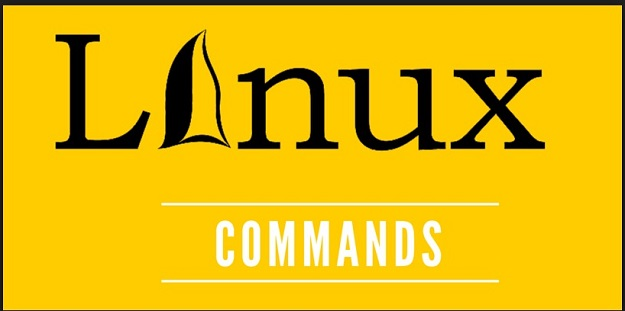 10 Linux Commands Every Web Developer Should Know About